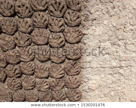 Stock photo: Cow and buffalo  dung cake