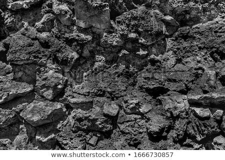 Fango slide texture può usato natura Foto d'archivio © ozaiachin