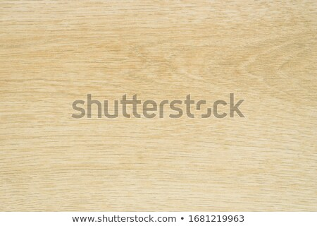 Light Woodgrain Texture Stock photo © ArenaCreative