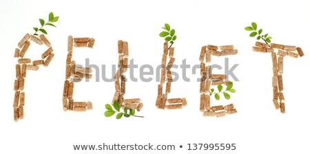 word eco made of wood pellets Stock photo © jirkaejc