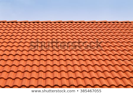 terracotta roof tiles stock photo © rhamm