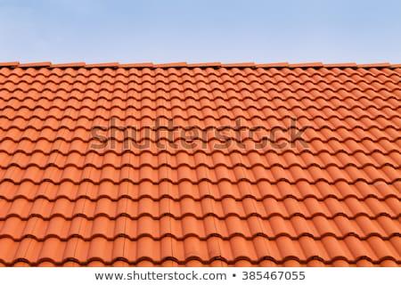 Terracotta Roof Tiles Stock photo © rhamm