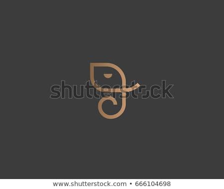 abstract ganesha head concept Stock photo © pathakdesigner