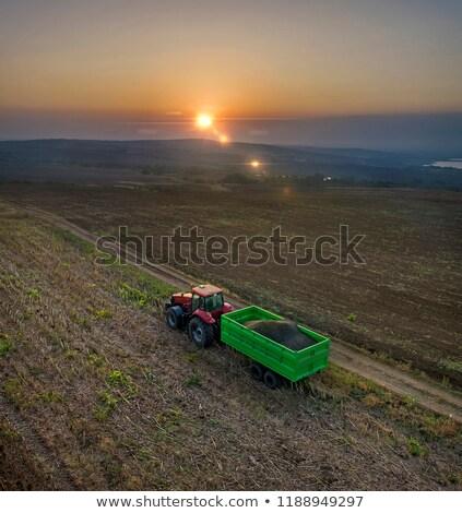 grande · trabalhando · campo · de · trigo · céu · natureza · campo - foto stock © goce