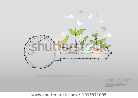 desenvolvimento · ilustração · luz - foto stock © lightsource