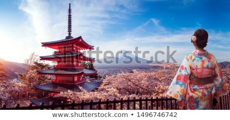 Autumn kimono girl Stock photo © Ansy