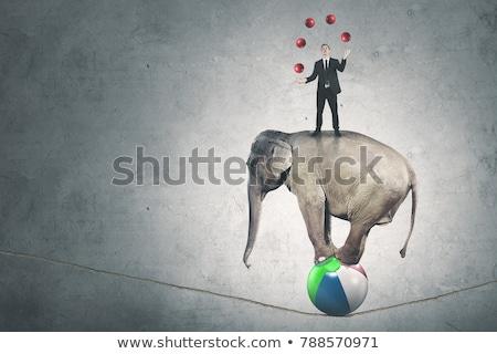Gelukkig zakenman jongleren bal vergadering Stockfoto © AndreyPopov