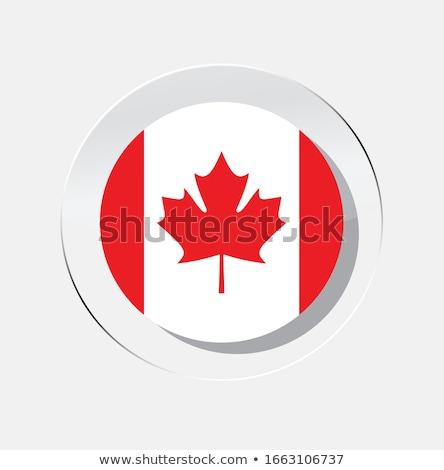 Kanada · zászló · ikon · izolált · fehér · földgömb - stock fotó © zeffss