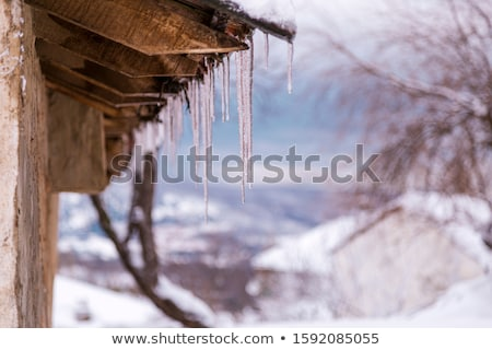 Long Icicles Melting of a roof top Stock photo © aetb