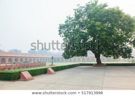 jardin · matin · brouillard · Taj · Mahal · ciel - photo stock © zastavkin