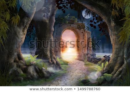 gyönyörű · régi · ház · bejárat · fa · lépcsőház · ház - stock fotó © manera