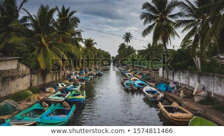 рыбы · лодка · рай · пляж · Ямайка · воды - Сток-фото © joyr