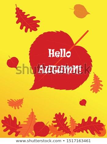 ősz kártya rubin szív vektor textúra Stock fotó © carodi