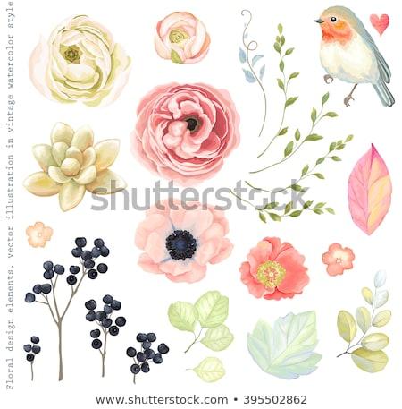 Autumn scrapbooking background in vintage style, vector illustration Stock photo © carodi