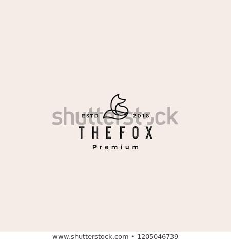 Fox икона иллюстрация элемент знак вектора Сток-фото © marish