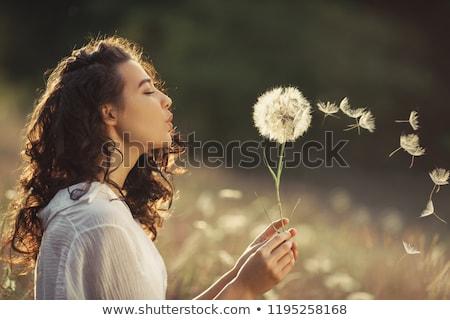 csinos · nő · fúj · pitypang · közelkép · portré · szórakozás - stock fotó © arenacreative