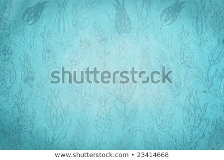 бумаги восточных Tulip текстуры старые Сток-фото © ezggystar
