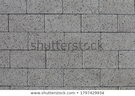 Smooth Gray Paving Slabs as of Rectangles and Squares. Stock photo © tashatuvango
