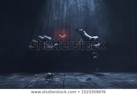 Kwaad heks jonge vrouw geïsoleerd witte Stockfoto © ivonnewierink