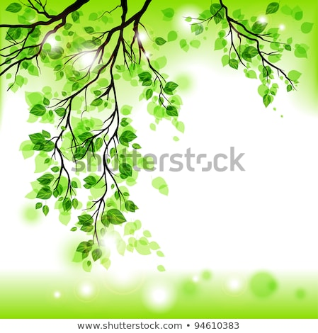 зеленые · листья · филиала · растущий · дерево · лес · лист - Сток-фото © beholdereye