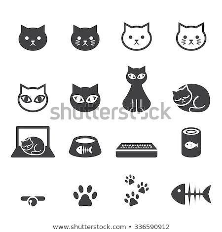 cute cat icons set i stock photo © sahua