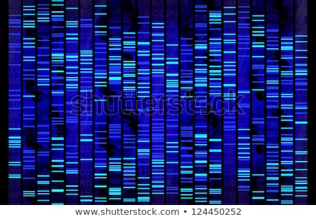 DNA Test Sanger Sequencing Stock photo © idesign