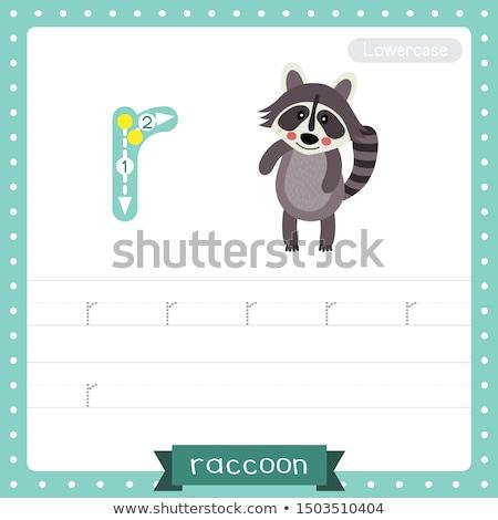 Letter r wasbeer illustratie natuur achtergrond kunst Stockfoto © bluering
