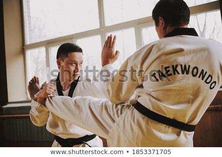 Iki taekwondo örnek adam spor Stok fotoğraf © bluering