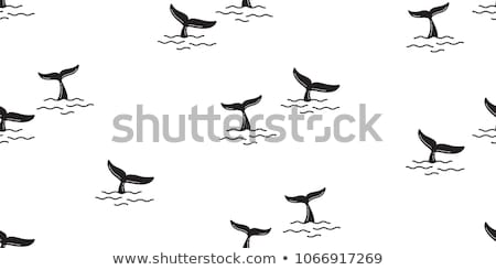 Shark fin swimming in water seamless pattern Stock photo © adrian_n