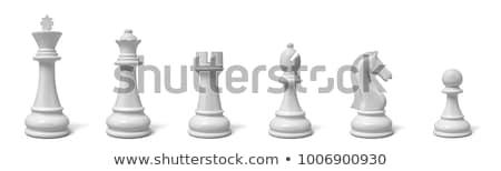 Fehér sakkfigurák csetepaté illusztráció ló háttér Stock fotó © bluering