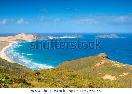 90 Mile Beach Dunes Stock photo © zambezi