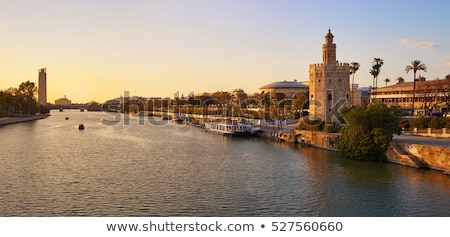 Seville sunset skyline torre del Oro in Sevilla Stock photo © lunamarina