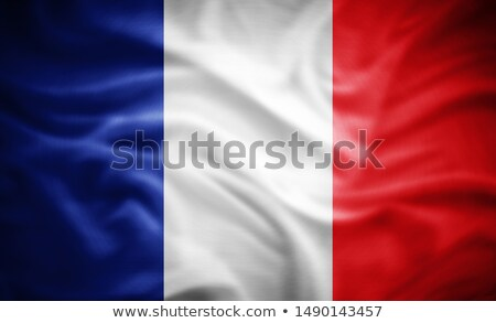 euro symbol and french flag - 3d illustration Stock photo © drizzd