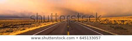 дороги · впереди · закат · солнце · пейзаж · лет - Сток-фото © cboswell