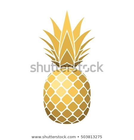 Pineapple golden fruit Design element, Tropical summer food Stock photo © Andrei_