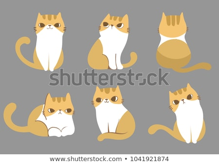 group of cute cats with different colors stock photo © ddraw