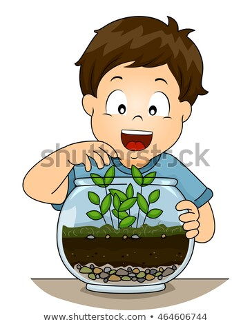 Kid Boy Botany Terrarium Stock photo © lenm