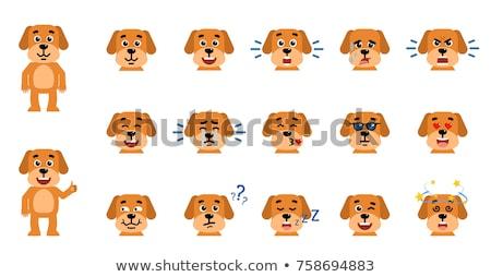 Adorável pequeno cão cara sorrir amor Foto stock © ikopylov