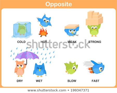 Opposite words for fast and slow Stock photo © bluering