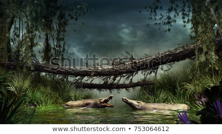Krokodil dzsungel folyó édesvíz úszik állat Stock fotó © THP