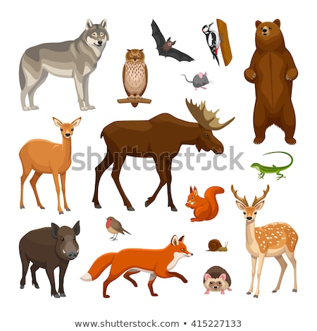 Wolf isolated. Forest predator beast. Vector illustration Stock photo © MaryValery