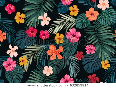 Tropikal çiçekler ebegümeci çiçek palmiye yaprağı iş Stok fotoğraf © odina222