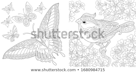 insects animal characters coloring book Stock photo © izakowski