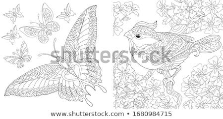 Insekten Tier Zeichen Ausmalbuch Karikatur Illustration Stock foto © izakowski