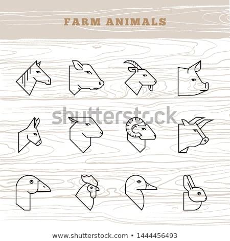 ムース · デザイン · スタイル · ベクトル · 草食性の - ストックフォト © foxysgraphic