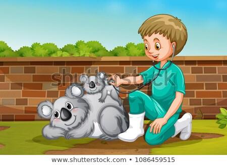 állatorvos elvesz törődés orvosi természet háttér Stock fotó © colematt
