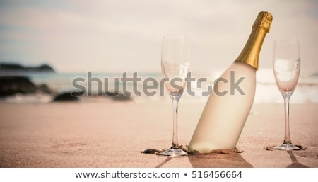 Champagner Flöte Gläser Sandstrand zwei blauer Himmel Stock foto © AndreyPopov