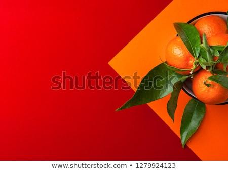 Китайский Новый год чистой дизайна красный фонарь Сток-фото © marish