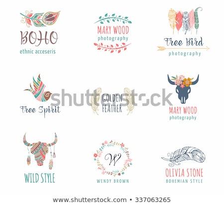 hand drawn bohemian tribal ethnic set of feathers stock photo © marish