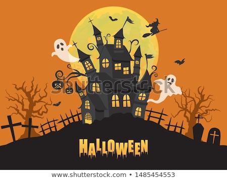 Halloween aranyos vektor üdvözlet kártyák plakátok Stock fotó © marish